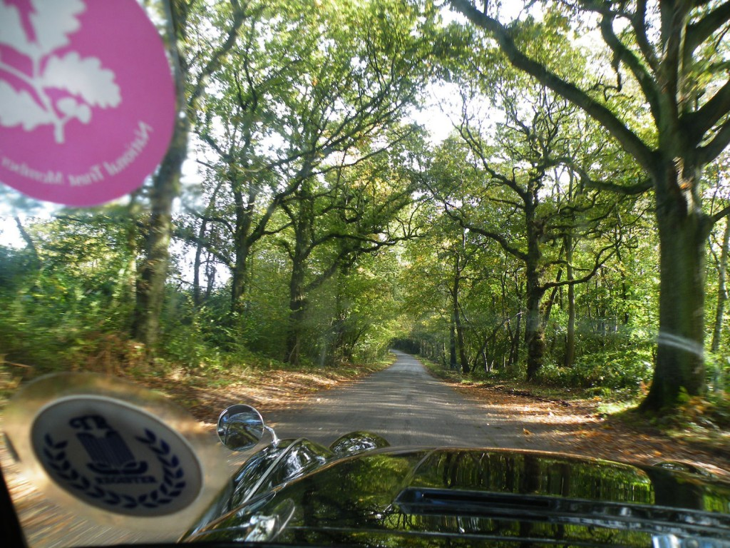 Leafy lanes and an unnessecary tax disc