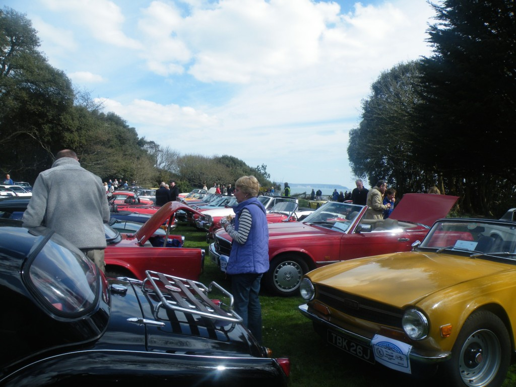 Just some of the 150 cars who took part