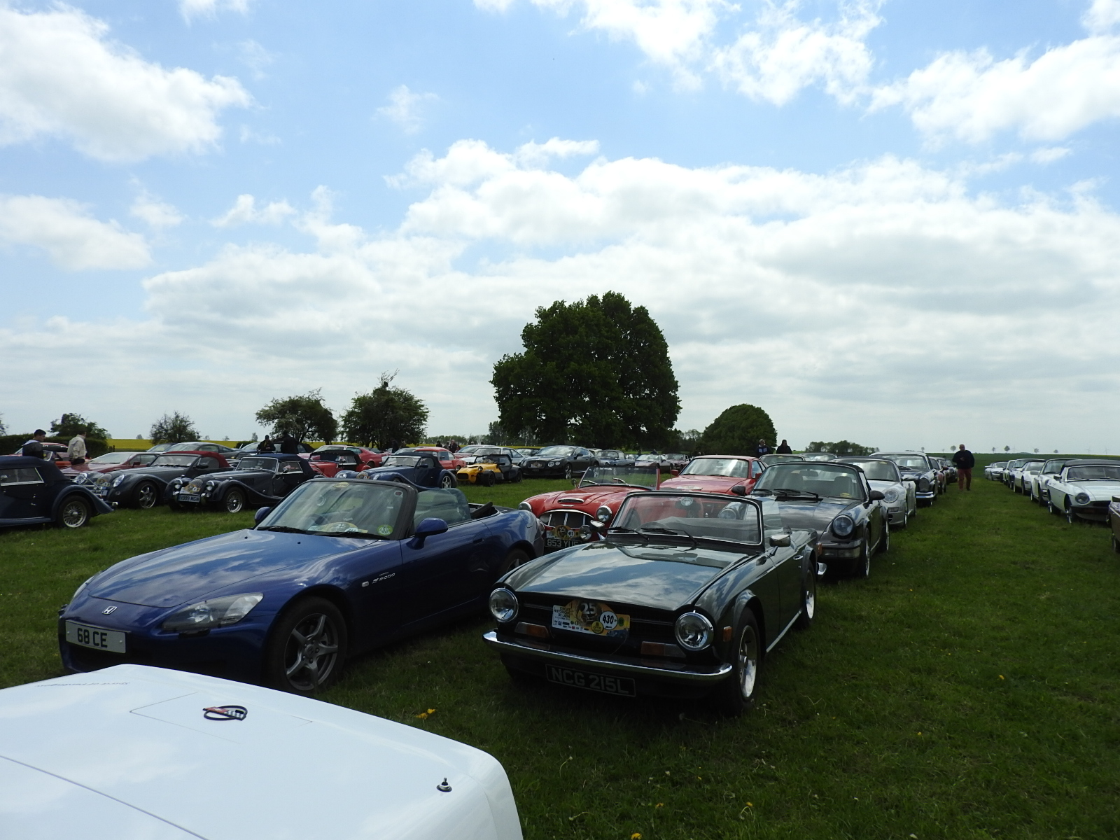 Over 450 cars in total